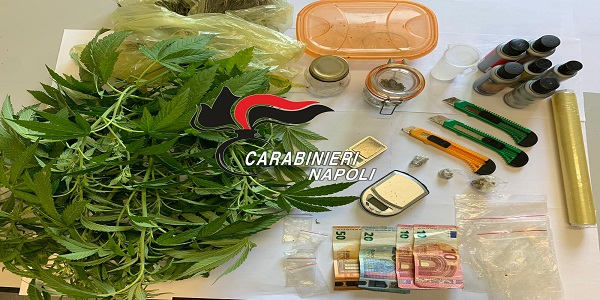 Monteruscello: coltivazione e detenzione di stupefacenti, 29enne arrestato dai CC