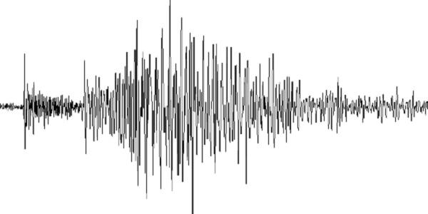 Terremoto, Protezione civile Campania: dalle prime verifiche, nessun danno